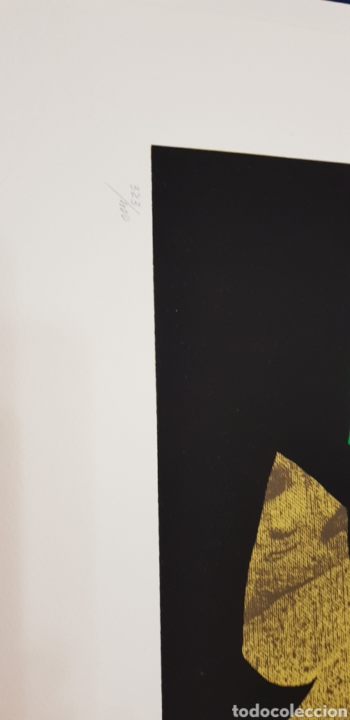 Arte: Rafael Gomez Aranda.serigrafia firmada y numerada. - Foto 2 - 140716022
