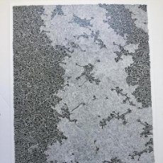 Arte: AVRAHAM INLENDER , SERIGRAFIA FIRMADA Y NUMERADA . Lote 145810906