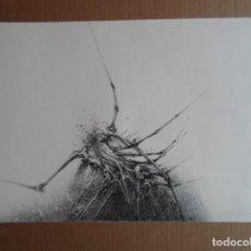 Arte: MANUEL RIVERA (GRANADA, 1927-MADRID, 1995) SERIGRAFÍA 1980 DE 32X49CMS, FIRMADA LÁPIZ Y NUM 87/350 . Lote 151555994