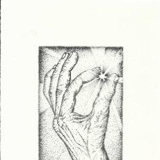 Arte: JULIÁN MENESES TORRES. LA MANO. FIRMADA A MANO. NUMERADA 27/60. 26X18 CM. 1994. PAPEL GUARRO.. Lote 151633010