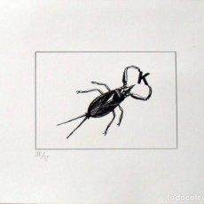 Arte: SERIGRAFÍA POEMA VISUAL. ESCARABAJO CON K. NUMERADA II/V. 31X38 CM. BUEN ESTADO. PAPEL GUARRO. . Lote 160733258