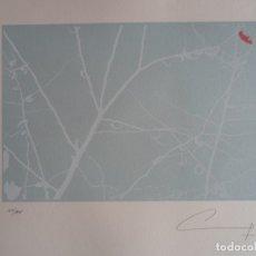 Arte: CARLOS GONZÁLEZ VILLAR (ARGENTINA 1949) SERIGRAFÍA 25X17 PAPEL 35X50 FIRMADA Y 127/475 OURENSE. Lote 178675310