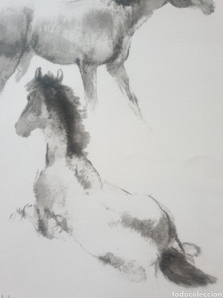 Arte: Roc Riera Rojas (Barcelona, 1913-1992) - Caballos.Prueba de Autor.Firmada. - Foto 4 - 184905942