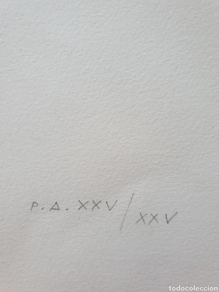 Arte: Roc Riera Rojas (Barcelona, 1913-1992) - Caballos.Prueba de Autor.Firmada. - Foto 7 - 184905942