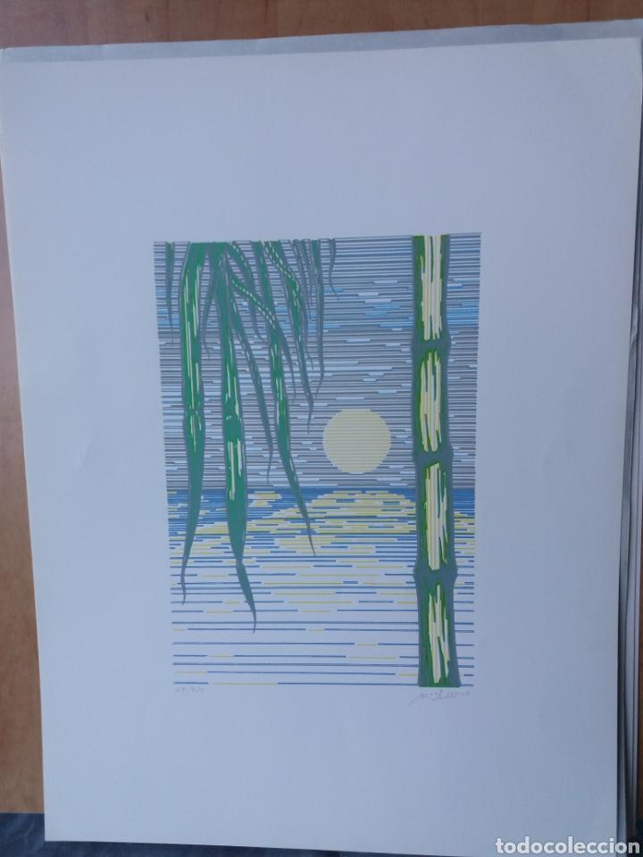 Arte: Cuatro láminas serigrafía firmadas por el autor y numeradas - Foto 5 - 205052887