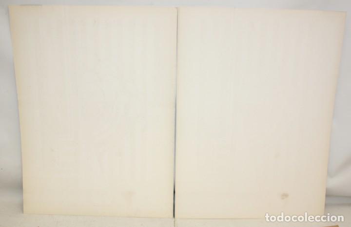 Arte: JOSE IRANZO ALMONACID -anzo- (Utiel, Valencia, 1931 - 2006) PAREJA DE SERIGRAFÍAS. TIRAJE: 194/220 - Foto 9 - 205688852