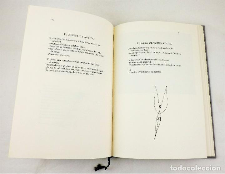 Arte: Rafael Alberti Sobre los ángeles+Serigrafía de Paul Wunderlich firmada y numerada Ed. Limitada - Foto 4 - 217022853