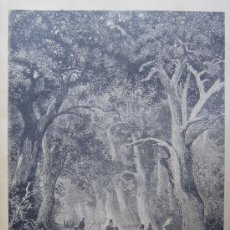 Arte: UNA CACERIA. XILOGRAFIA ORIGINAL DE 1885. Lote 24746750