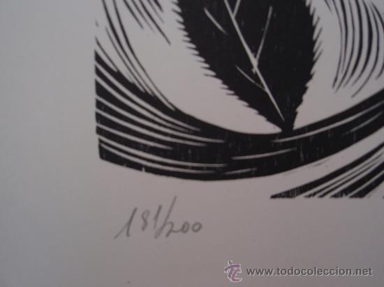 Arte: Castro Couso 1979 - Grabado Xilografía - Rosalia de Castro. - Foto 3 - 26866934