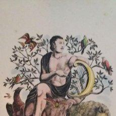 Arte: XILOGRAFÍA DE ENRIC C RICART. ORFEU/ORFEO COLOREADA 0/22 FIRMADA. 1954. Lote 122116419