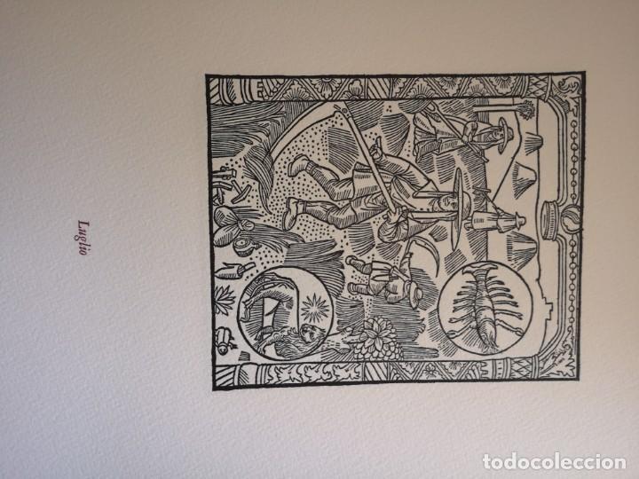Arte: 12 xilografie trate dal kalendrier des Bergiers - Foto 8 - 164136958