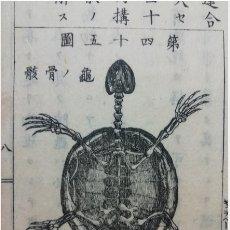 Arte: LIBRO ESCOLAR JAPONÉS -1882- 104 PÁG. - 30 ILUSTRACIONES. Lote 177218155