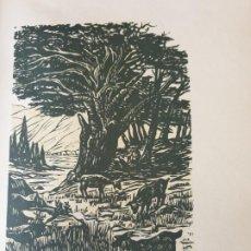 Arte: FILIS. EGLOGA.FREY LOPE DE VEGA CARPIO. 1962. XILOGRAFIA FIRMADA JUAN JOSE TORRALBA. Lote 200638867
