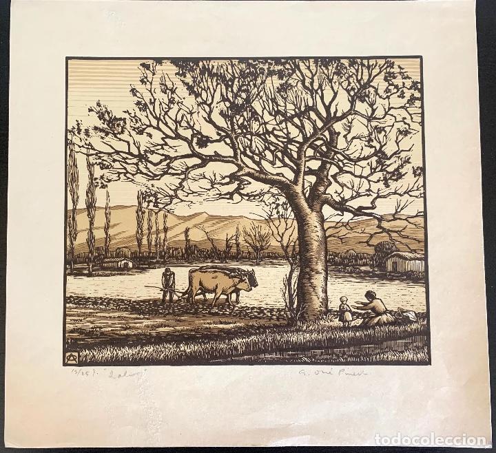 ANTONI OLLÉ PINELL (1897-1981) LABOR. XILOGRAFÍA FIRMADA Y NUMERADA 15/25 (Arte - Xilografía)