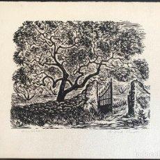 Arte: ANTONI OLLÉ PINELL (1897-1981) AMETLLER. XILOGRAFÍA FIRMADA Y TITULADA. Lote 206980571