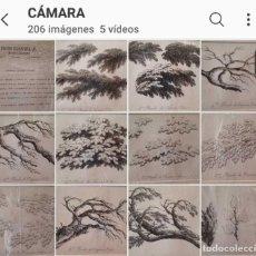 Arte: LOTE DE 14 XILOGRAFIAS HACIA 1800.. Lote 211965703