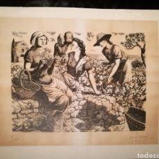 Arte: LA VENDIMIA POR ENRIC CRISTÒFOL RICART (1893-1960).. Lote 241221775