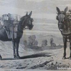 Arte: PARQUE DE CAMPAÑA GUERRAS CARLISTAS GRABADO XILOGRÁFICO XILOGRAFÍA 1874. Lote 254633765