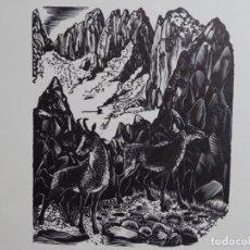 Arte: XILOGRAFÍA ILEGIBLE. TIRADA DE 50 UNIDADES.. Lote 264266460
