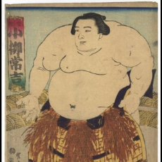 Arte: KOYANAGI. UKIYOE DE SHUNTEI. Lote 279430273
