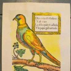 Arte: LO PAPAGALL. EL PAPAGALLO. XILOGRAFÍA ANTIGUA DE 1678. ESTAMPA DEL SIGLO XX. COLOREADA A MANO. AVES.. Lote 32210750