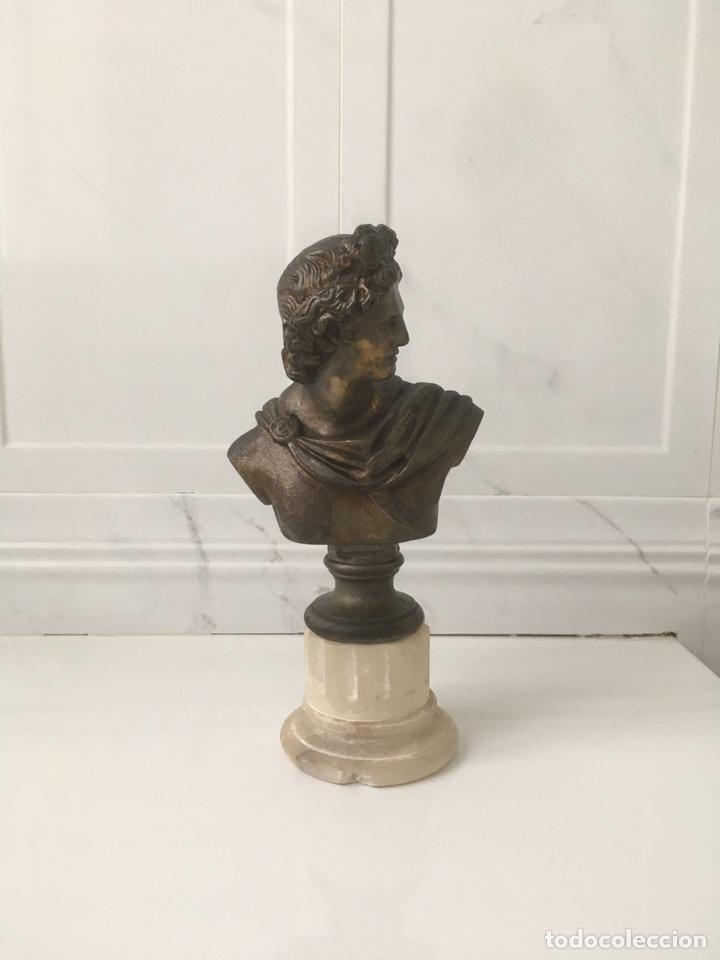 Arte: Busto de Apolo del Belvedere - Foto 7 - 188728963