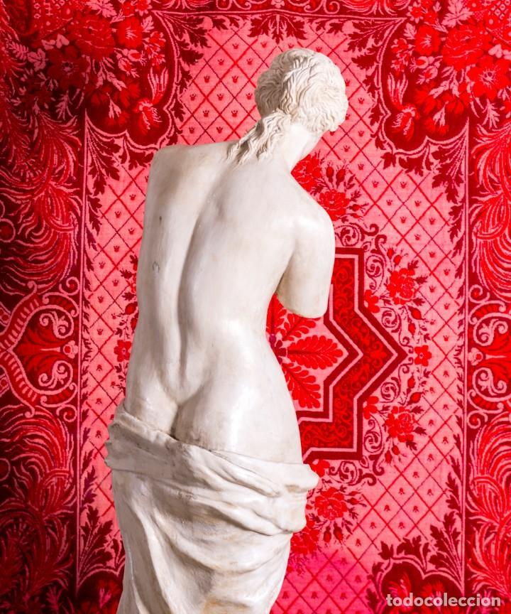 Arte: Estatua Antigua Venus De Milo - Foto 3 - 215410966