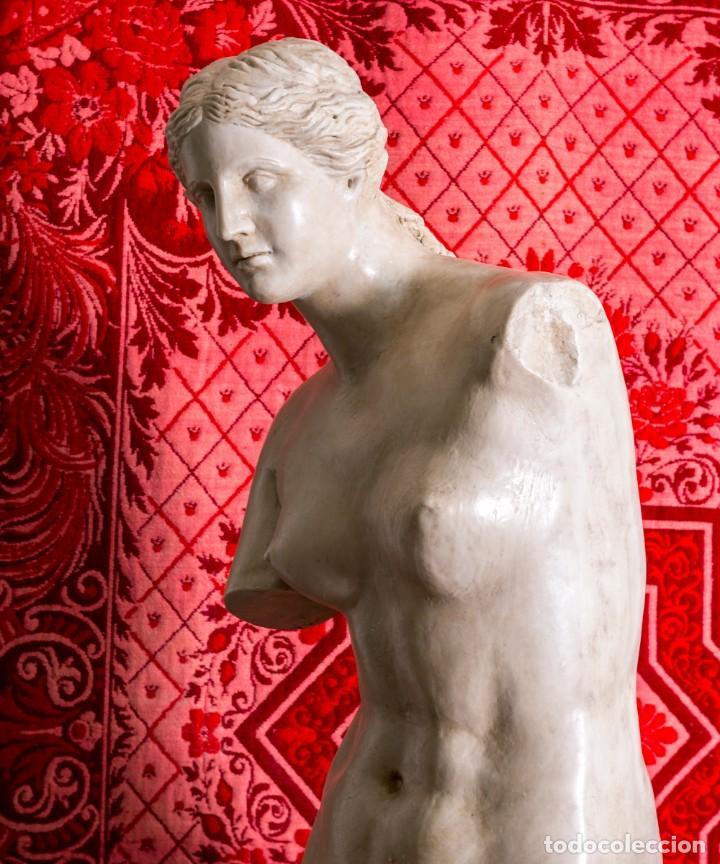 Arte: Estatua Antigua Venus De Milo - Foto 4 - 215410966