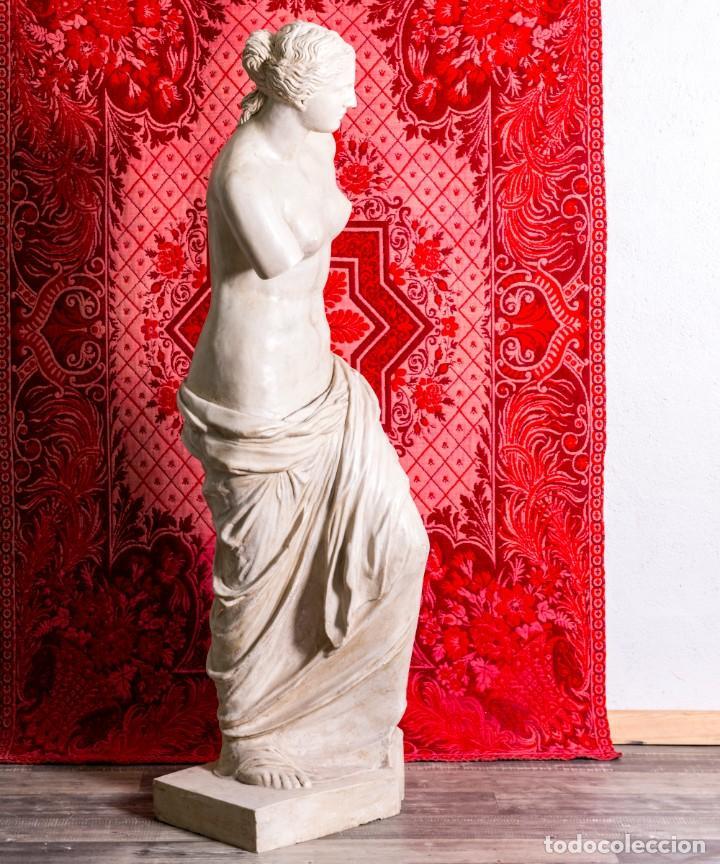 Arte: Estatua Antigua Venus De Milo - Foto 6 - 215410966