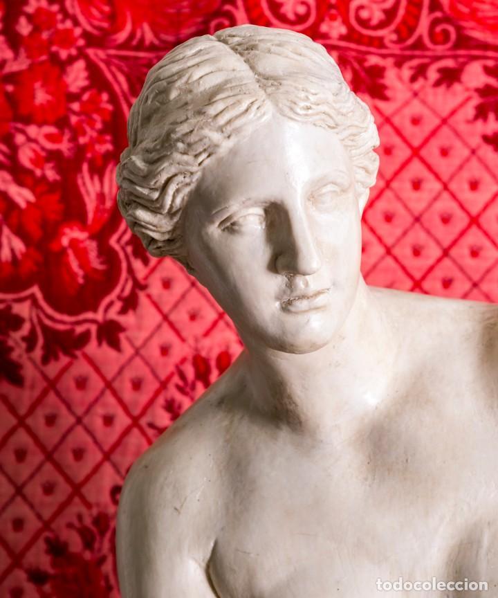 Arte: Estatua Antigua Venus De Milo - Foto 7 - 215410966