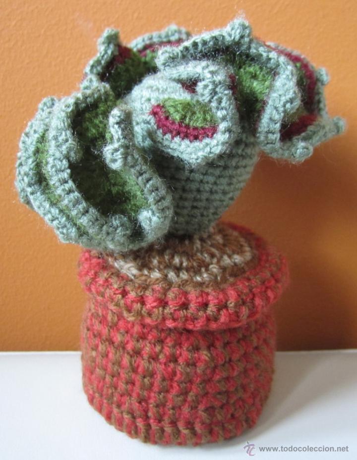 Cactus Amigurumi Alfiletero : Cactus Couple Amigurumi ~ Snacksies  Handicraft Corner | Patrón de ganchillo, Ganchillo amigurumi, Patrones  amigurumi | 929x720
