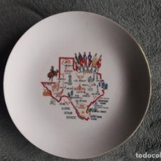 Artesanía: PLATO TEXAS / THE LONE STAR STATE / FOR DECORATIVE USE ONLY / MIDE: 22 CMS. DIÁMETRO. Lote 111523395