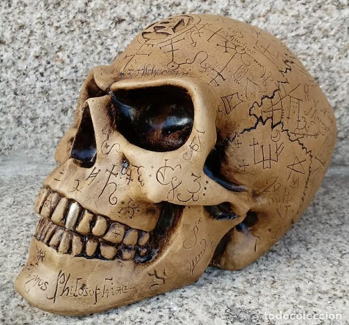 Artesanía: CALAVERA ALQUIMISTA de 22 x 12 x 11 cm en polvo de alabastro - Foto 2 - 156776952