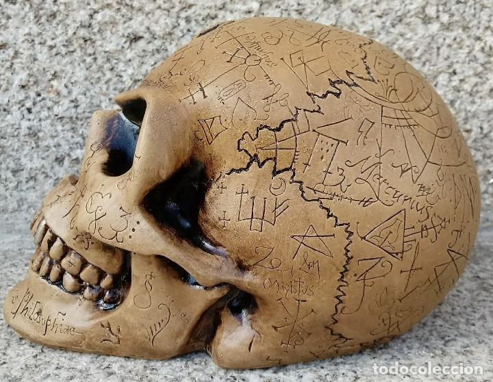 Artesanía: CALAVERA ALQUIMISTA de 22 x 12 x 11 cm en polvo de alabastro - Foto 3 - 156776952