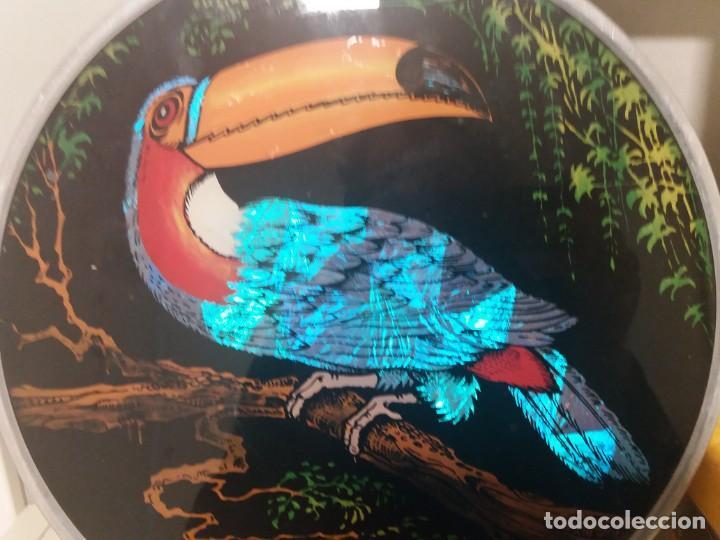 Artesanía: Dos cuadros brasileños de gran colorido. - Foto 6 - 152298626