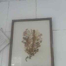 Artesanía: CUADRO DE COCINA CON RAMO DE FLORES SECAS. Lote 197338053