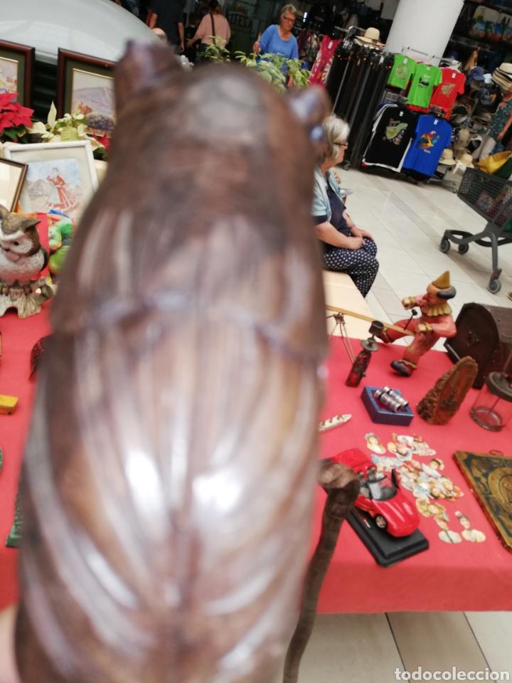 Artesanía: Bastón realizado por encargo con cabeza de búho.. Tallado a mano.. - Foto 4 - 194127820