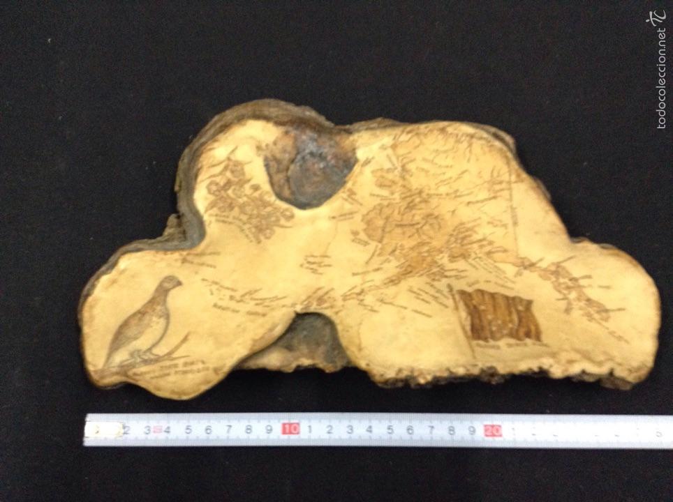 Artesanía: Souvenir de alaska - en corteza de arbol - car93 - Foto 3 - 54165549