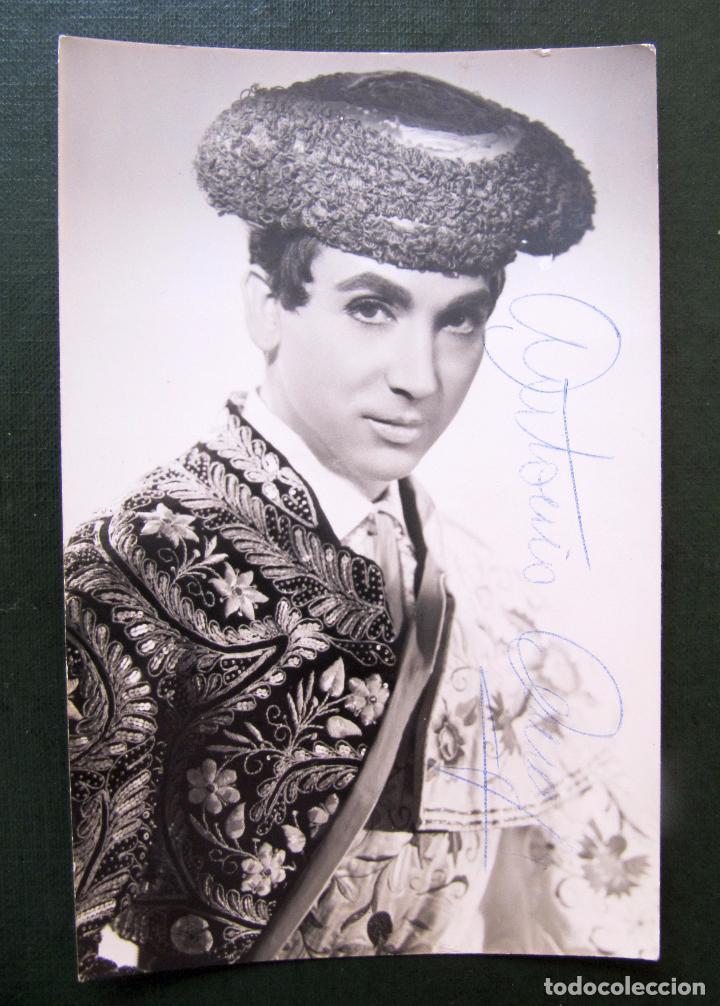 AUTOGRAFO DE ANTONIO AMAYA - ALFREDO FOTOGRAFO BARCELONA - TAMAÑO POSTAL (Música - Autógrafos de Cantantes )