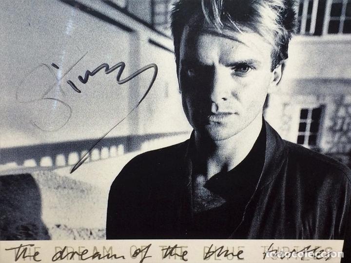 Autógrafos de Música : STING. AUTÓGRAFO EN CARÁTULA DE CD. THE DREAM OF BLUE TOURTLES. U.S.A.(?) CIRCA 1985 - Foto 4 - 89177508