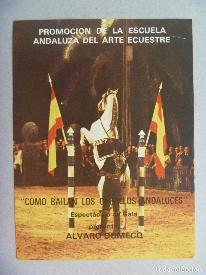 Autógrafos de Música : AUTOGRAFO ORIGINAL DE ROCIO JURADO . EN UN FOLLETO DE LA ESCUELA ANDALUZA DE ARTE ECUESTRE - Foto 2 - 97930891