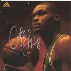 Coleccionismo deportivo: AUTÓGRAFO ORIGINAL DE ANTOINE WALKER. 18X13 CM. HAND SIGNED. AUTOGRAPH. CELTICS. NBA. ADIDAS.. Lote 129294631
