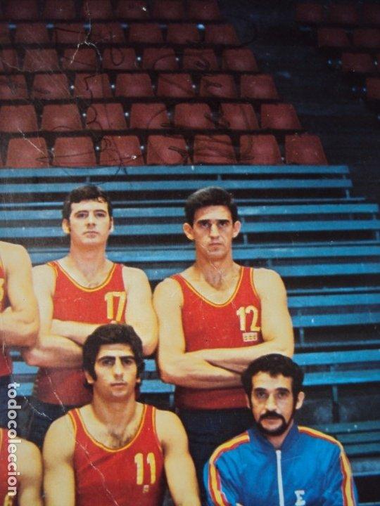 Coleccionismo deportivo: (F-190907)CARTEL CON AUTOGRAFOS ORIGINALES SELECCION ESPAÑOLA DE BASKET AÑOS 80-BUSCATO,CORBALAN,ETC - Foto 11 - 175655840
