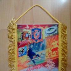 Coleccionismo deportivo: ESPAÑA CAMPEON DEL MUNDO 2010 INIESTA. Lote 122604463
