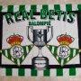 REAL BETIS BALOMPIE, COPA DE S.M EL REY ( 131X97 ) BANDERA TELA