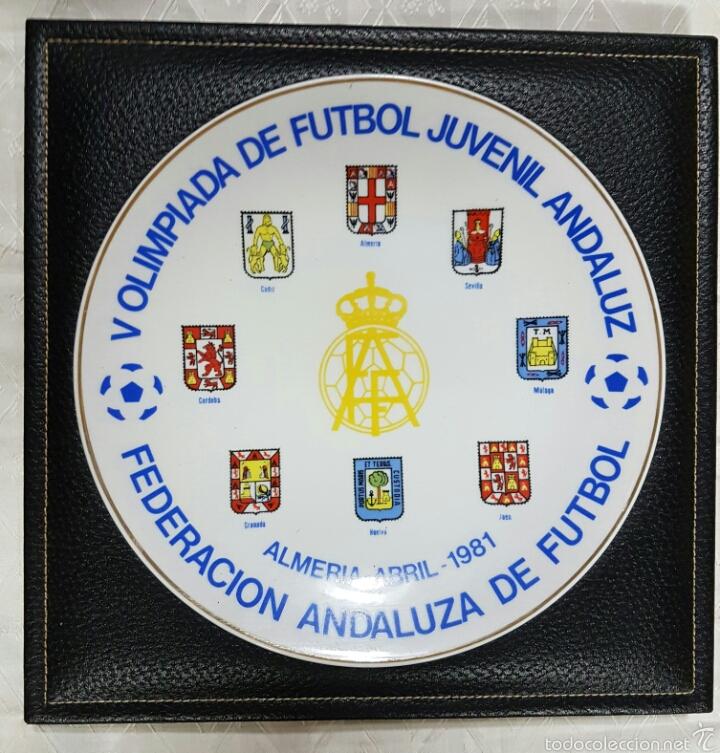 METOPA OLIMPIADA JUVENIL 1981 (Coleccionismo Deportivo - Banderas y Banderines otros Deportes)