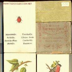 Barajas de cartas: ..IN 60 FEINEN FARBENDRUCK KARTEN - ALEMANIA - FÁBRICA : MORSTATT, SCHRODT & CO - Nº NAIPES : 60. Lote 2439900