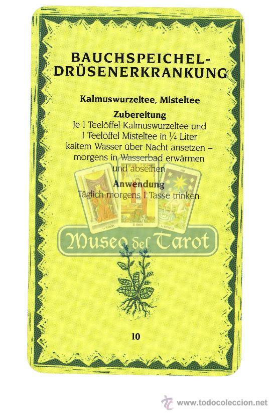 Barajas de cartas: Heilkräuterkarten - Foto 3 - 36761931