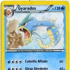 Barajas de cartas: GYARADOS - Nº 24 - CARTAS POKEMON - POKEMON TRADING CARD - AÑO 2012. Lote 40805985