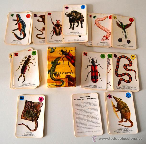 Barajas de cartas: BARAJA INFANTIL * 42 CARTAS * EL JUEGO DE LA NATURALEZA * COMPLETA - Foto 2 - 42661107